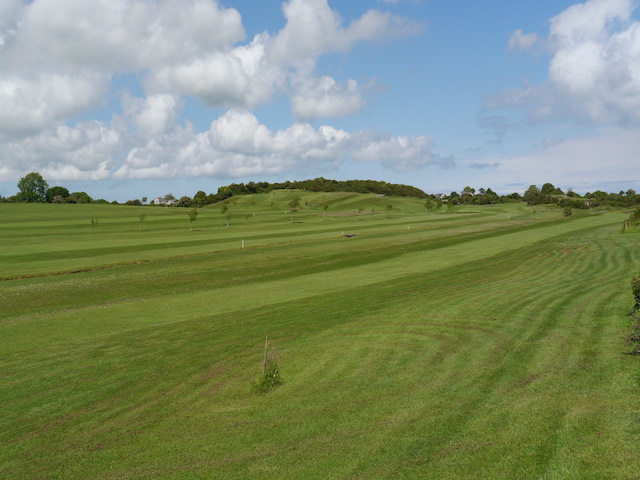 The course image